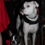 Me and Nitro of Deaf Dogs Rock!