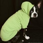 hoodie-green-4