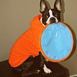 hoodie-orange-3