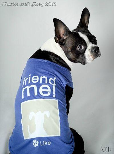 Dog tees- facebook tee