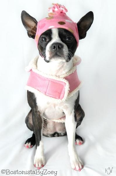 Dog coats- pink coat, pink polka dot hat 3
