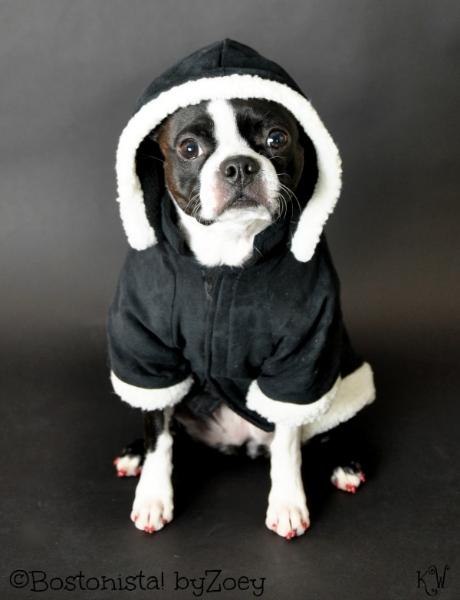 Dog coats- Black sherpa coat 1