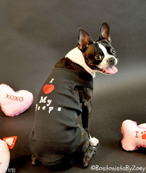 Dog Tees- i love my peeps tee 1
