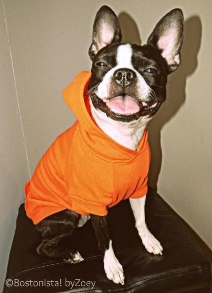 hoodie-orange-1