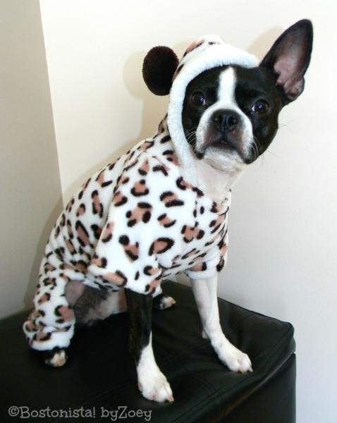 dog pajamas- leopard-pjs-2