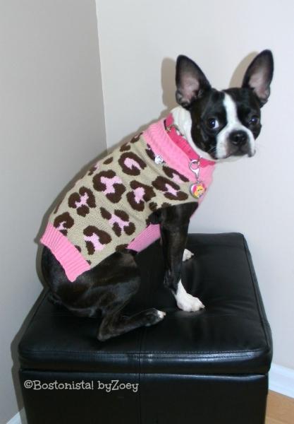 dog sweaters- leopard-sweater-2