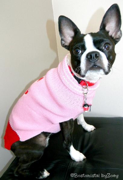 dog sweaters- pink-bone-sweater-2