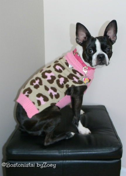 dog sweaters- pink-leopard-sweater-1