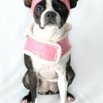 Dog coats- pink coat, pink polka dot hat 3