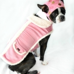 Dog coats- pink coat, pink polka dot hat