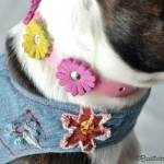 Collars- Leather flower collar