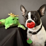 frog lips 1