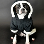 Dog coats- Black sherpa coat 1