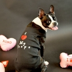 Dog Tees- i love my peeps tee 1