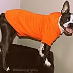 hoodie-orange