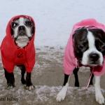 hoodie-pink-4