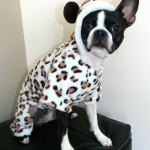 dog pajamas- leopard-pjs-2