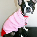 dog sweaters- pink-bone-sweater-2
