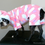 dog pajamas- pink-heart-pjs Daisy