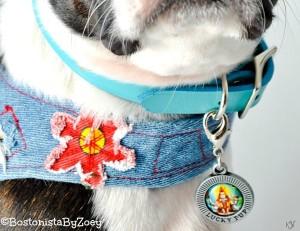 Lucky Dog Charm