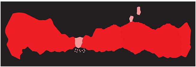BOSTONISTABANNERweb