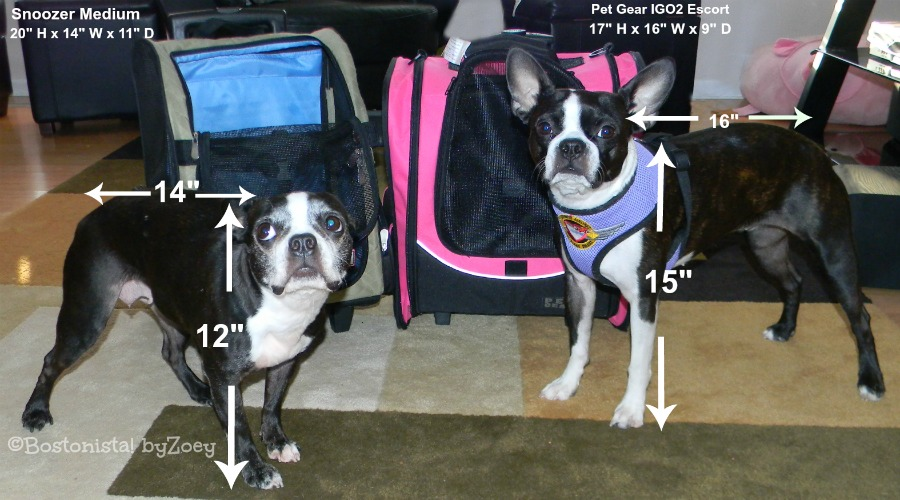 Zoey S Favorite Pet Carriers Air Travel On Southwest