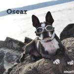 My Bestie: Oscar!