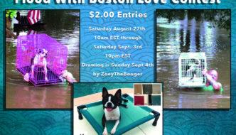 Flood With Boston Love Contest