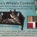 Jessie's Wheels Contest