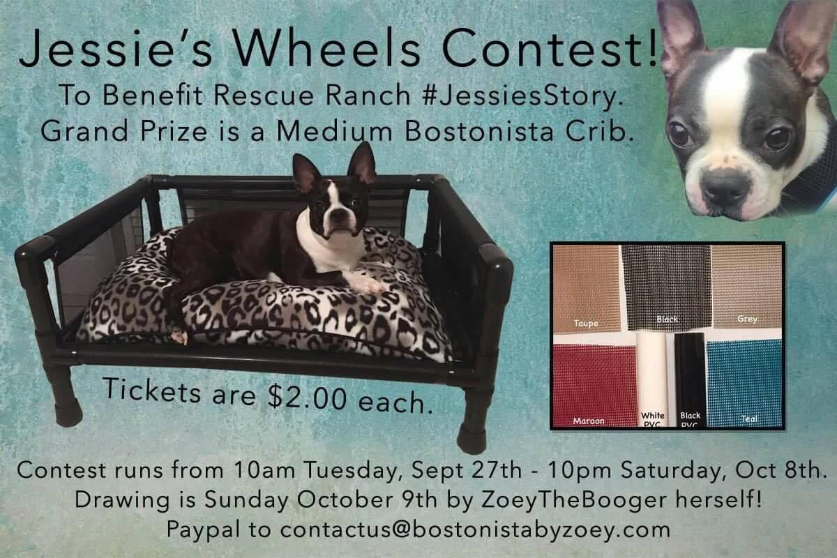 Jessie's Wheels Contest