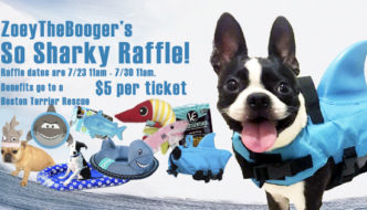 ZoeyTheBooger's So Sharky Raffle!